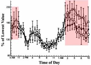 テストステロンの1日の分泌量の推移