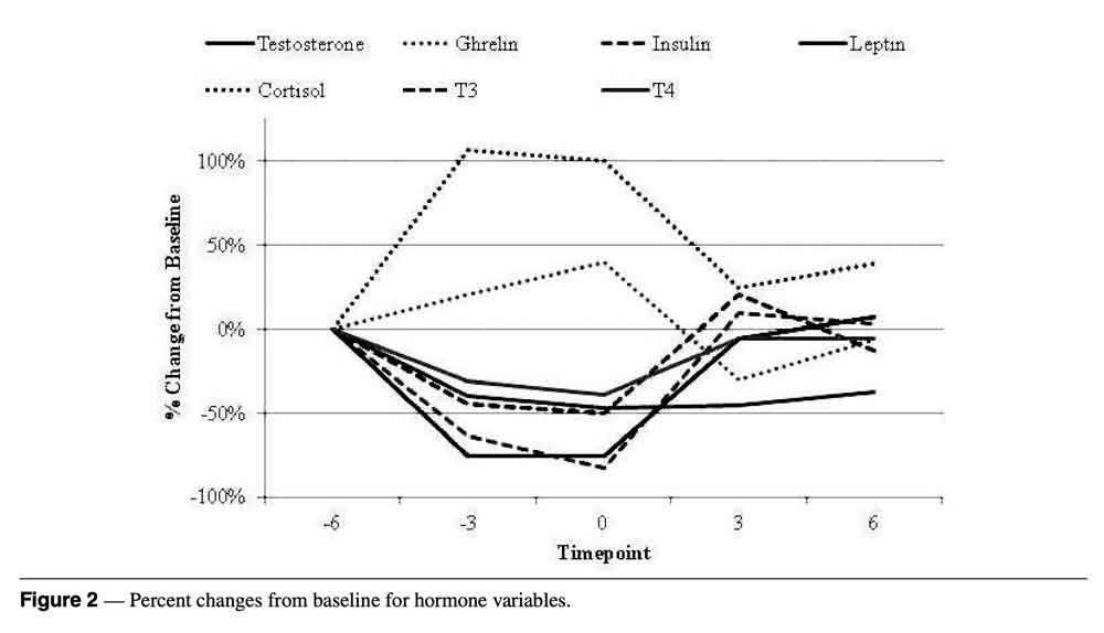 体脂肪とテストステロンの関係