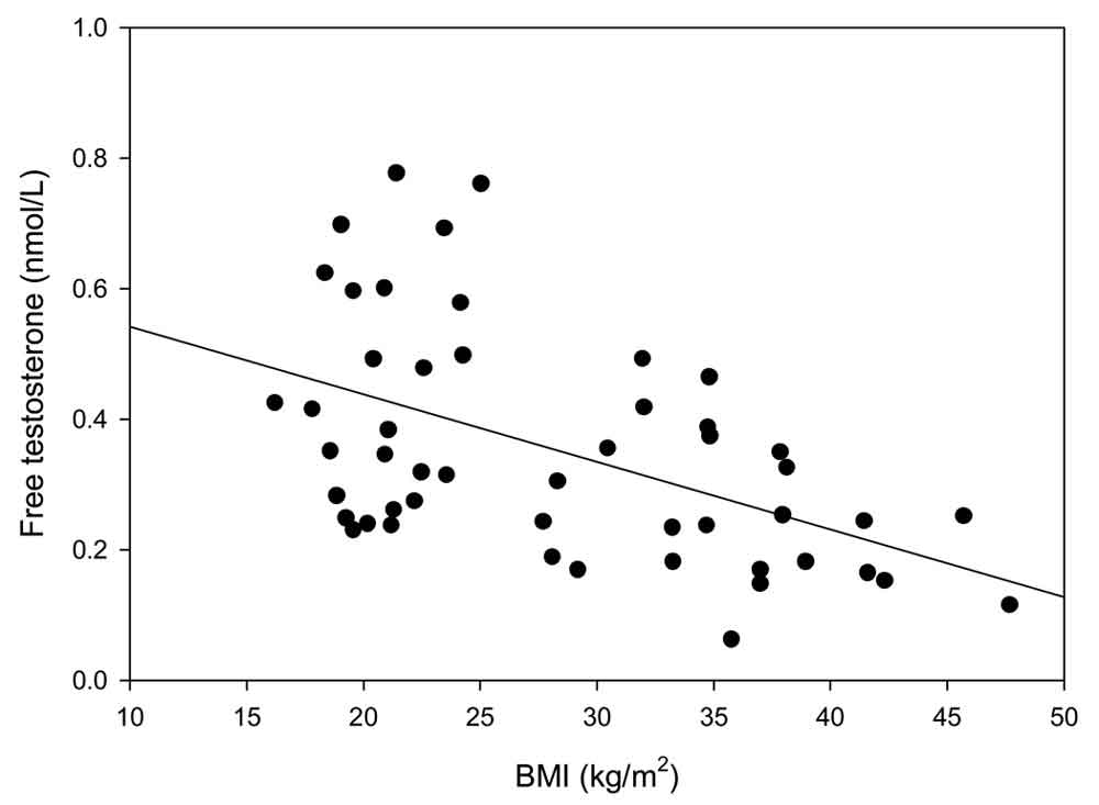 テストステロンとBMIの関係