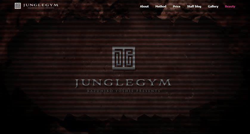 ジャングルジムトップ画像