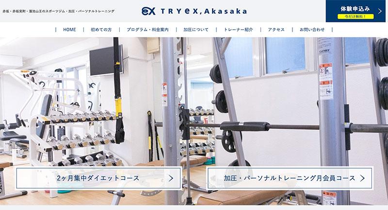 トライエクス赤坂のトップ画像